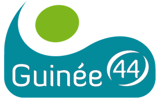 Guinée 44